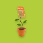 Simyo plant